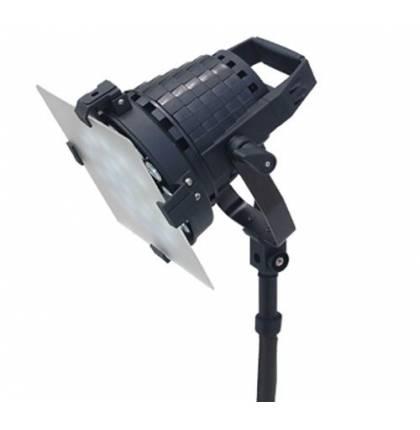 Комплект из 2 светильников PROAIM Intense Lights